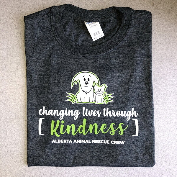 T-Shirt - Changing Lives