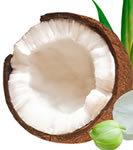 Fractionated Coconut Oil 8 fl oz (240 ml) MCT ACCCOFRA