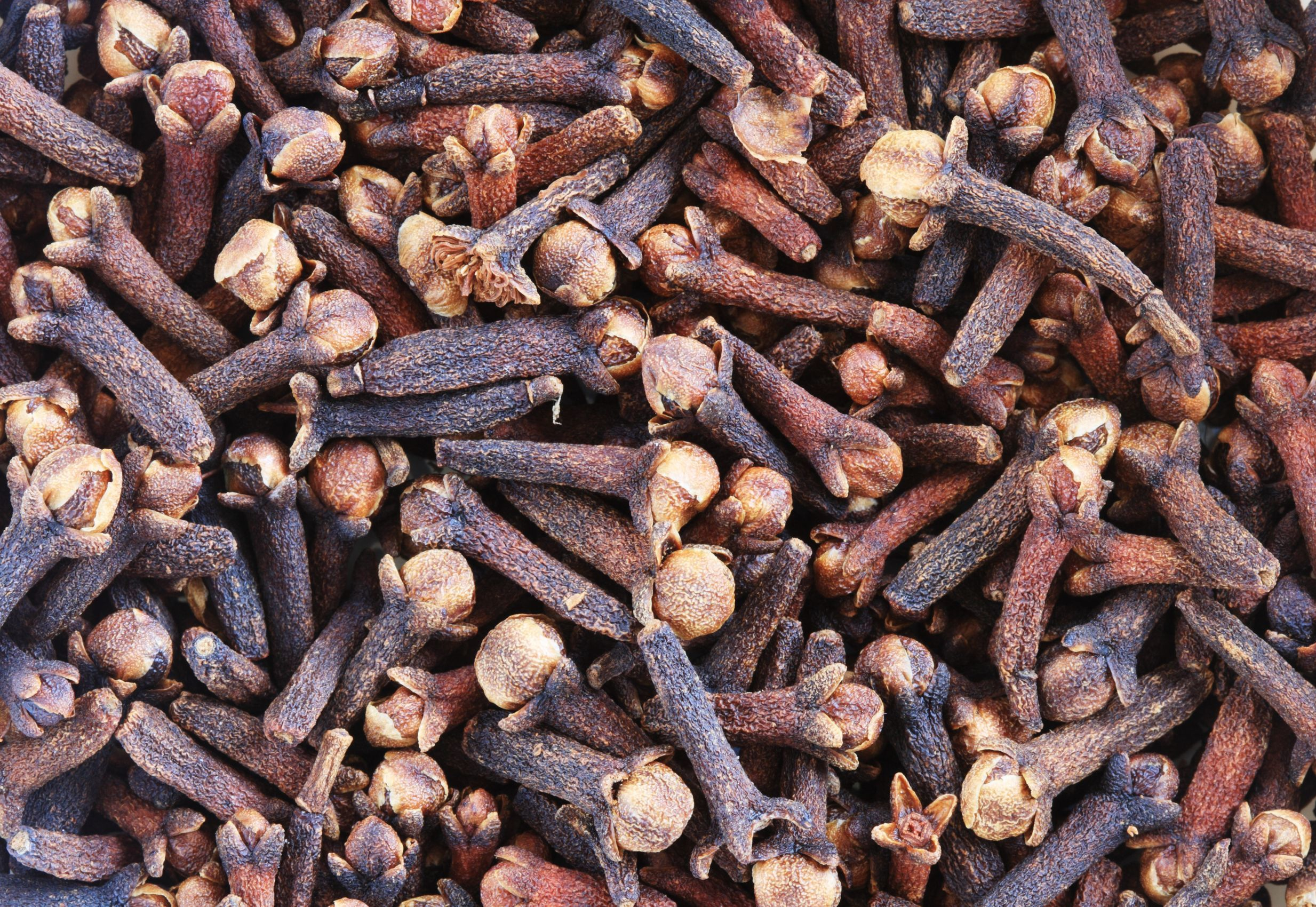 Clove Bud Pure Essential Oil with Analysis Report