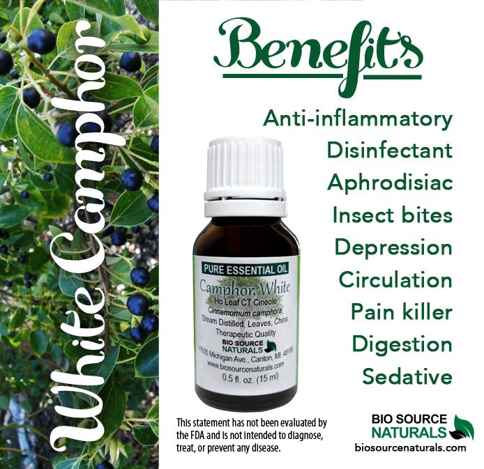 Camphor, White Pure Essential Oil - Ho Leaf CT Cineole