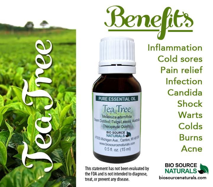 Tea Tree Pure Essential Oil - 0.5 fl oz (15 ml)