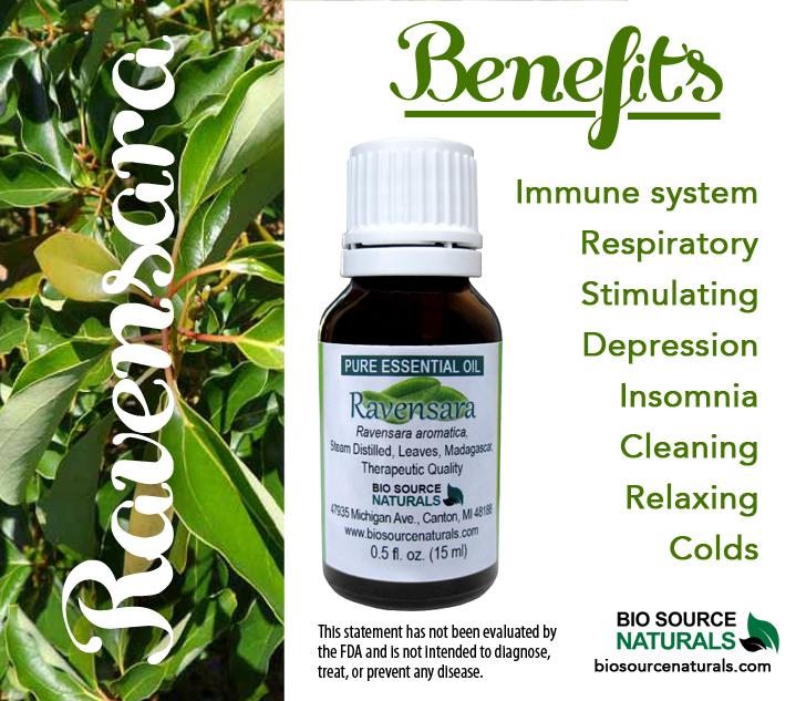 Ravensara Pure Essential Oil