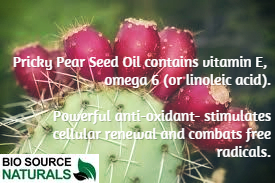 Prickly Pear Seed Oil - 8 fl oz (240 ml)
