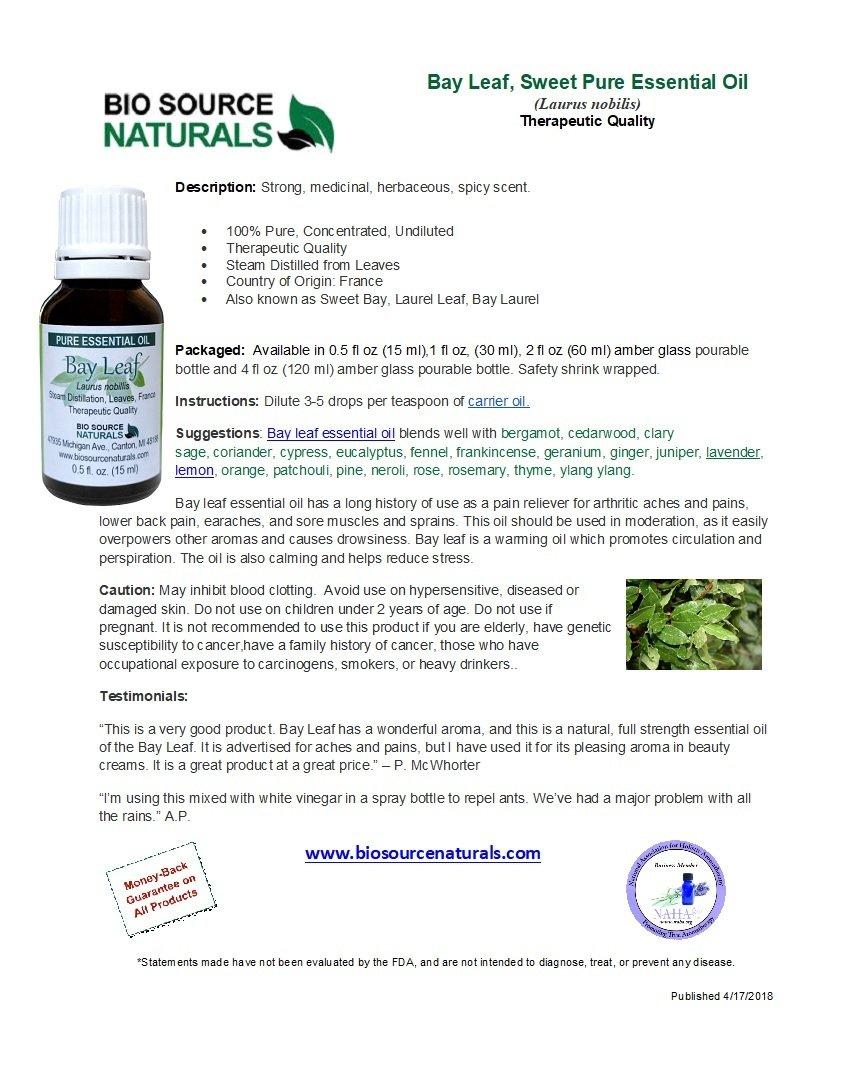 Bay Leaf (Sweet) Pure Essential Oil