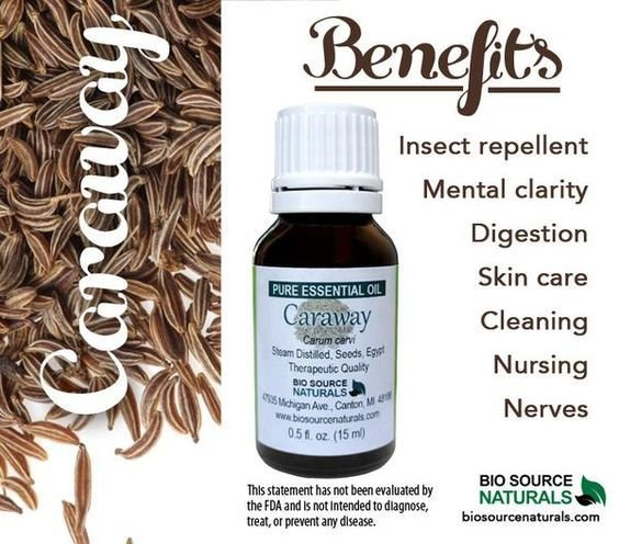 Caraway Pure Essential Oil