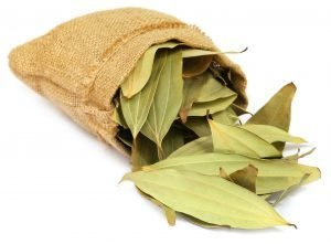 Cassia Leaf Pure Essential Oil