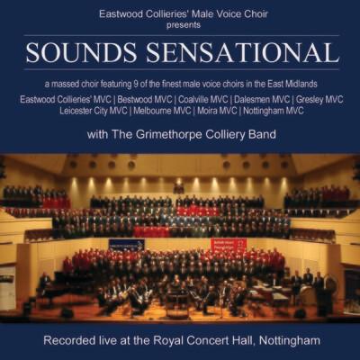 Sounds Sensational 2008