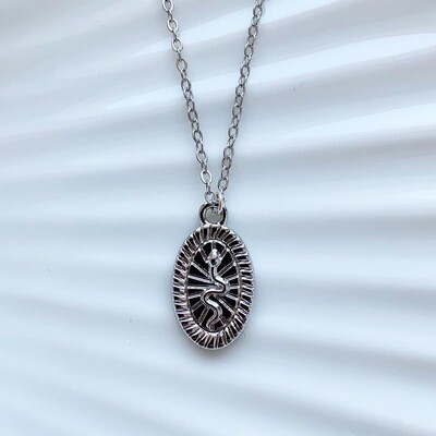 Snake coin ketting zilver
