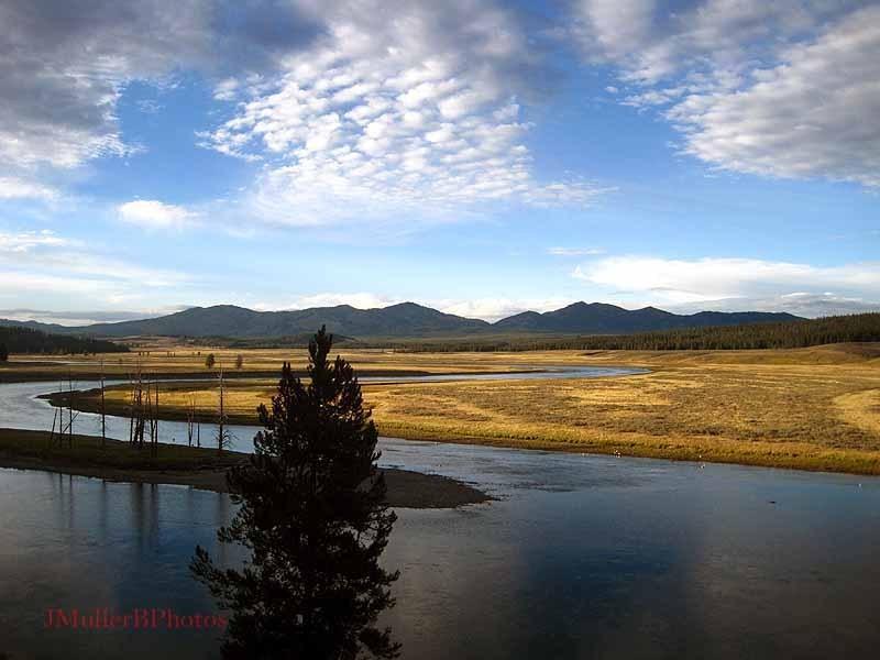 Hayden Valley, Yellowstone NP - August 31,2012
