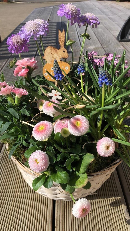 Frühlingskorb | Geschenkkorb | verschiedene Größen
