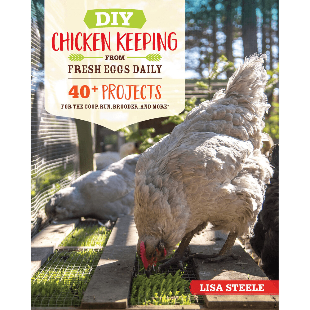 DIY Chicken Keeping from Fresh Eggs Daily with FREE Bonus Download with Pre-Order