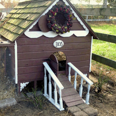 Gingerbread Duck House Building Plans - Instant Download