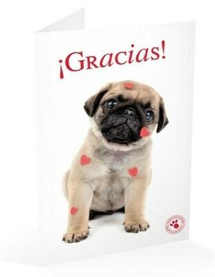 Tarjeta Felicitación Perro Carlino Gracias