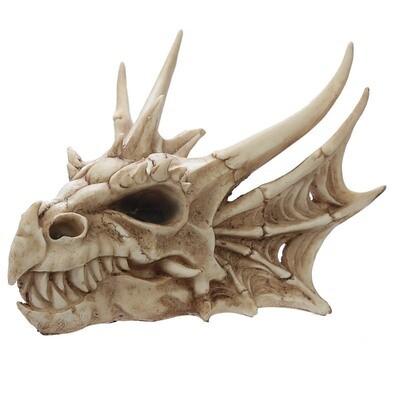Placa Calavera de Dragón