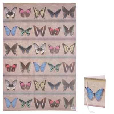 Papel de Regalo Mariposas