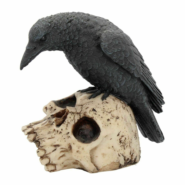 Calavera con Cuervo
