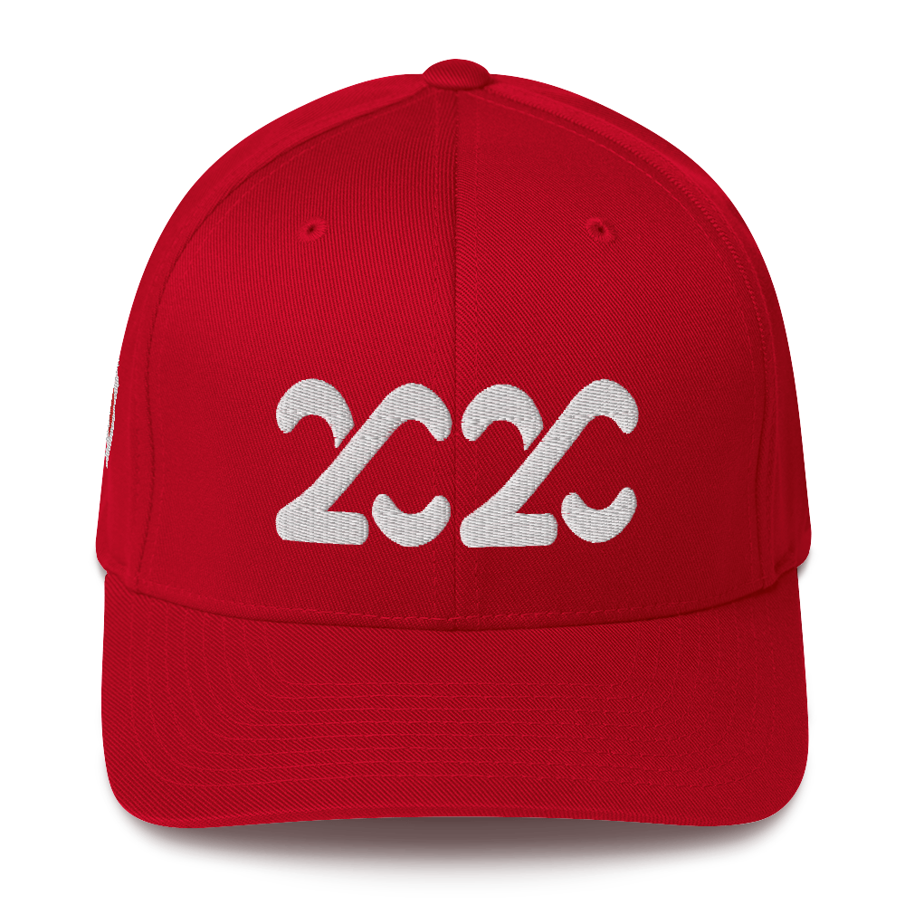 2020 Fitted Baseball Cap