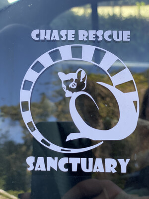 Chase Decals