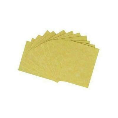 Light Parchment 12 Pack (2