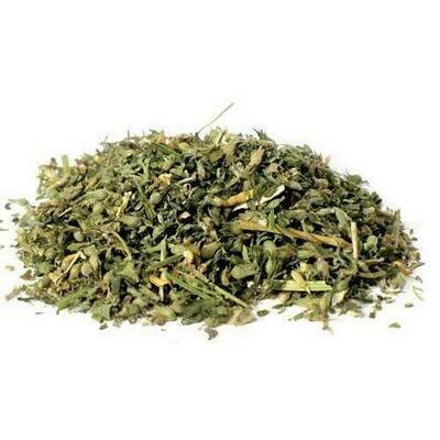 Catnip cut 2oz  (Nepeta cataria)