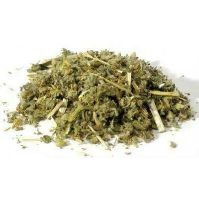 1 Lb Horehound cut (Marrubium vulgare)