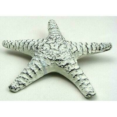 Antique White Starfish
