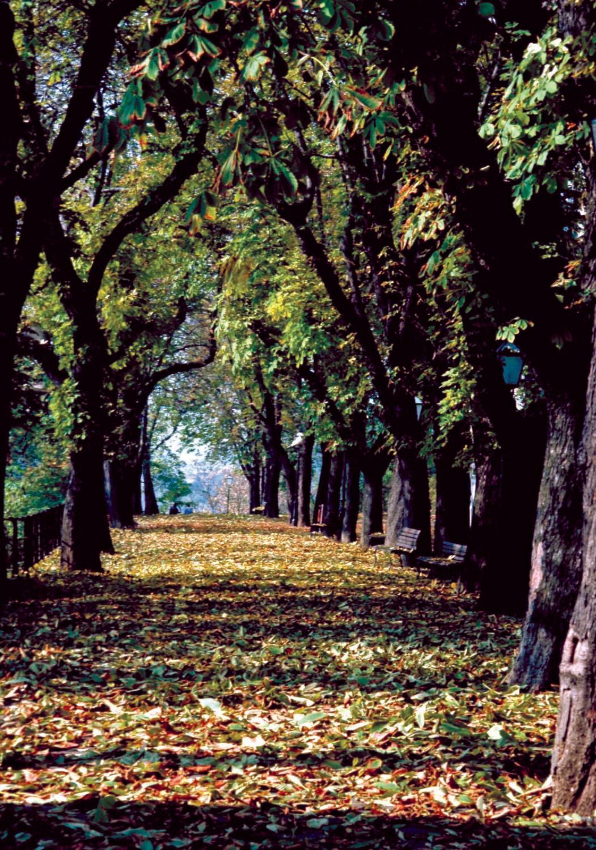November in Zagreb