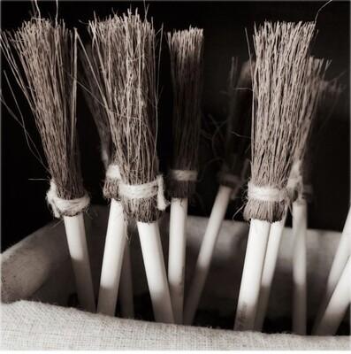 Witch Broom Pen
