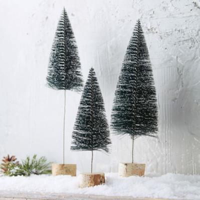 Birch Bush Trees