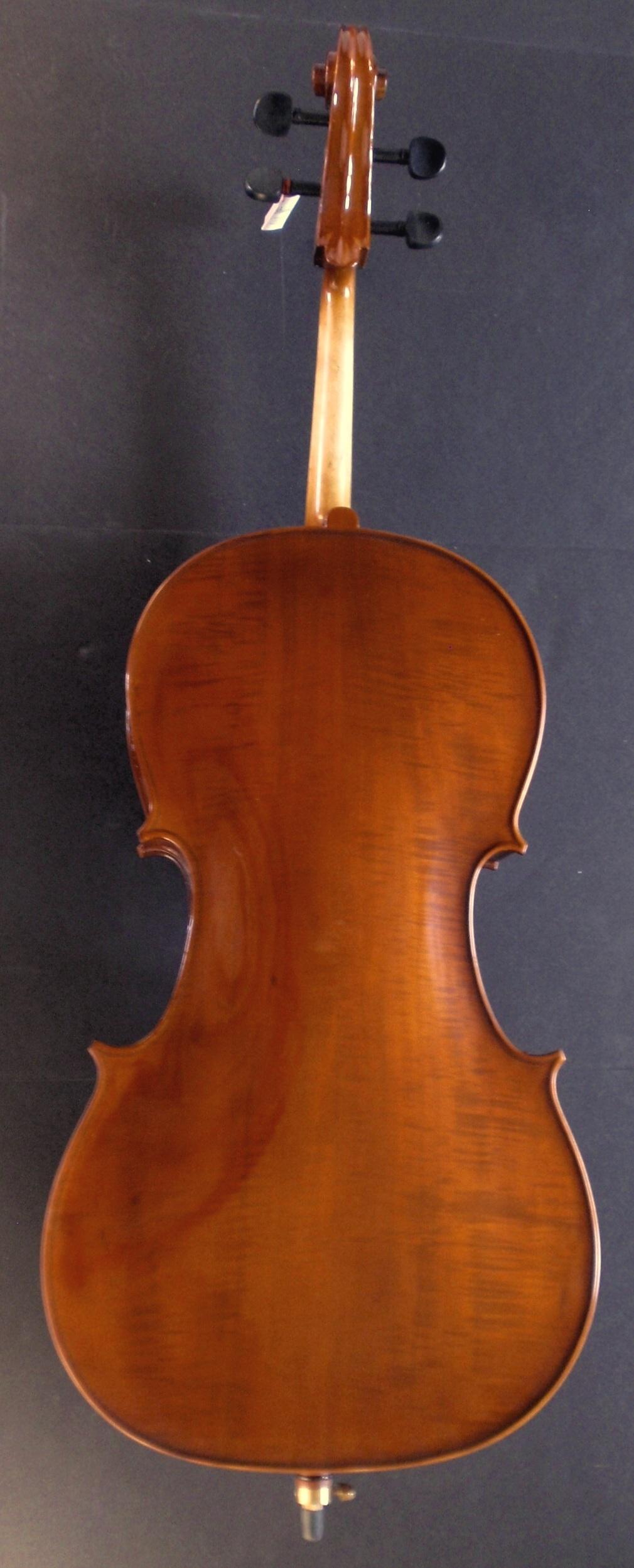 Allegro Cello Backview