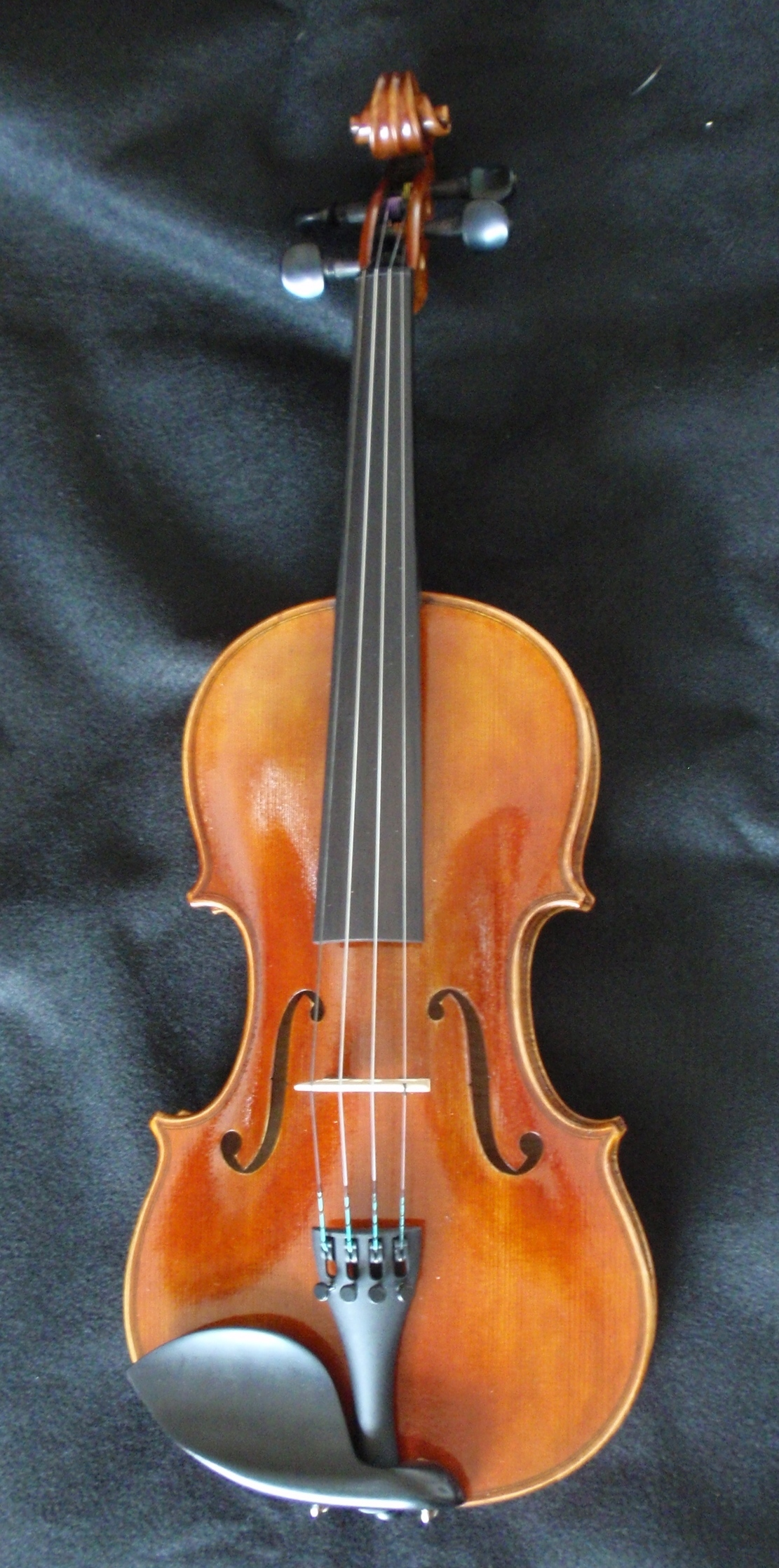 Thankful Strings B25 Violin Outfit