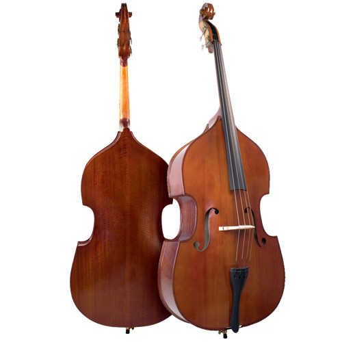 Bergamo VB029 Bass