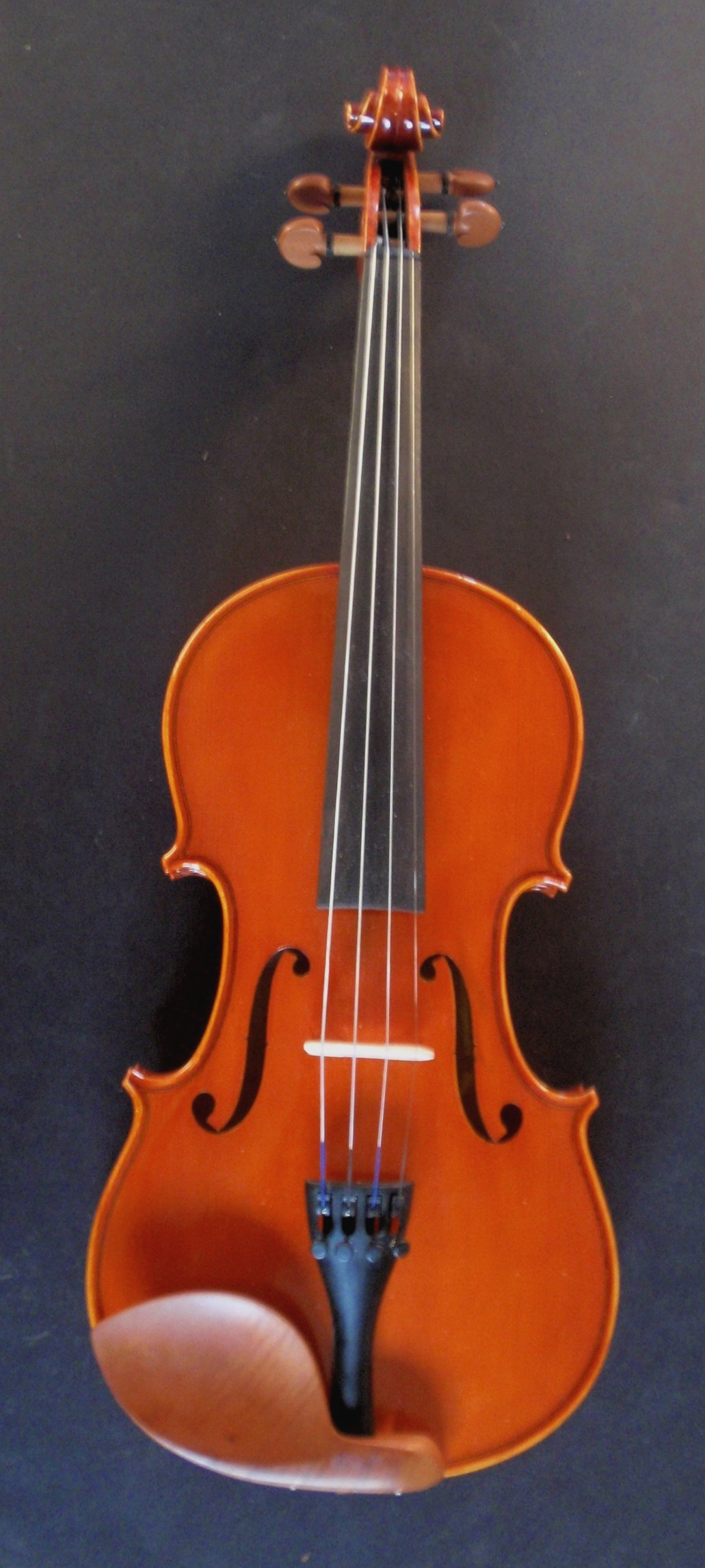 Vivo Prelude Violin Frontview