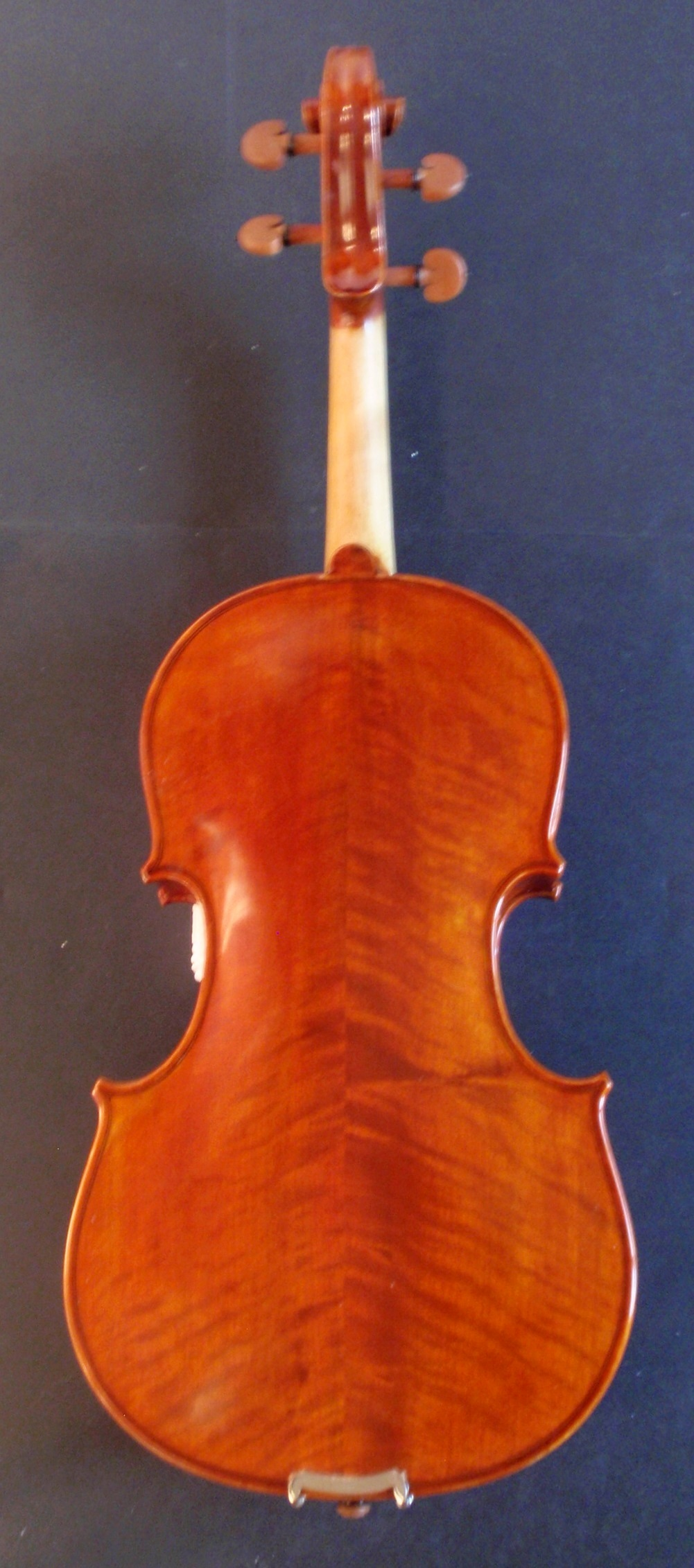 Vivo Prelude Viola Backview