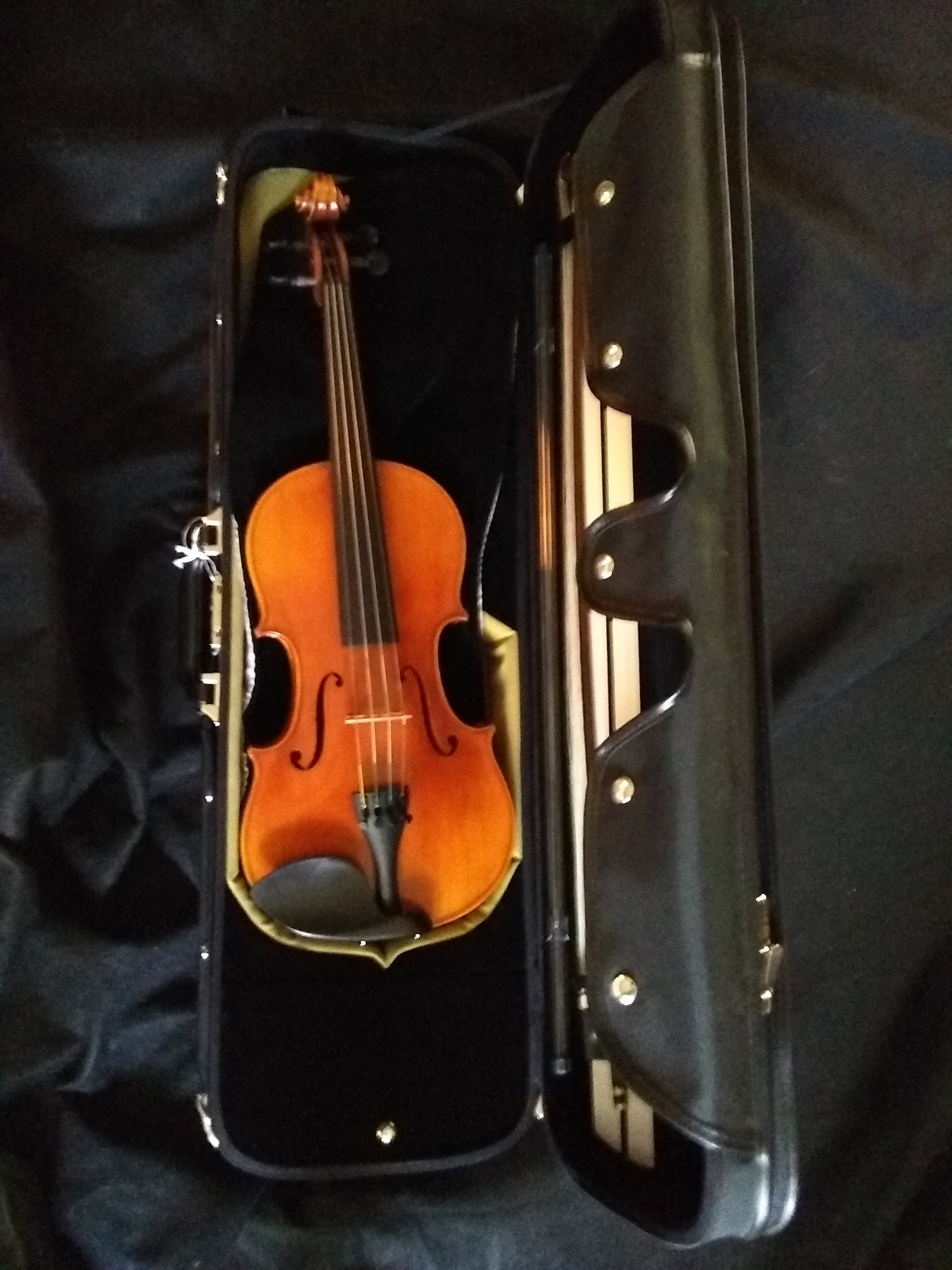 Thankful Strings B50 Violin Outfit Thkstring B50