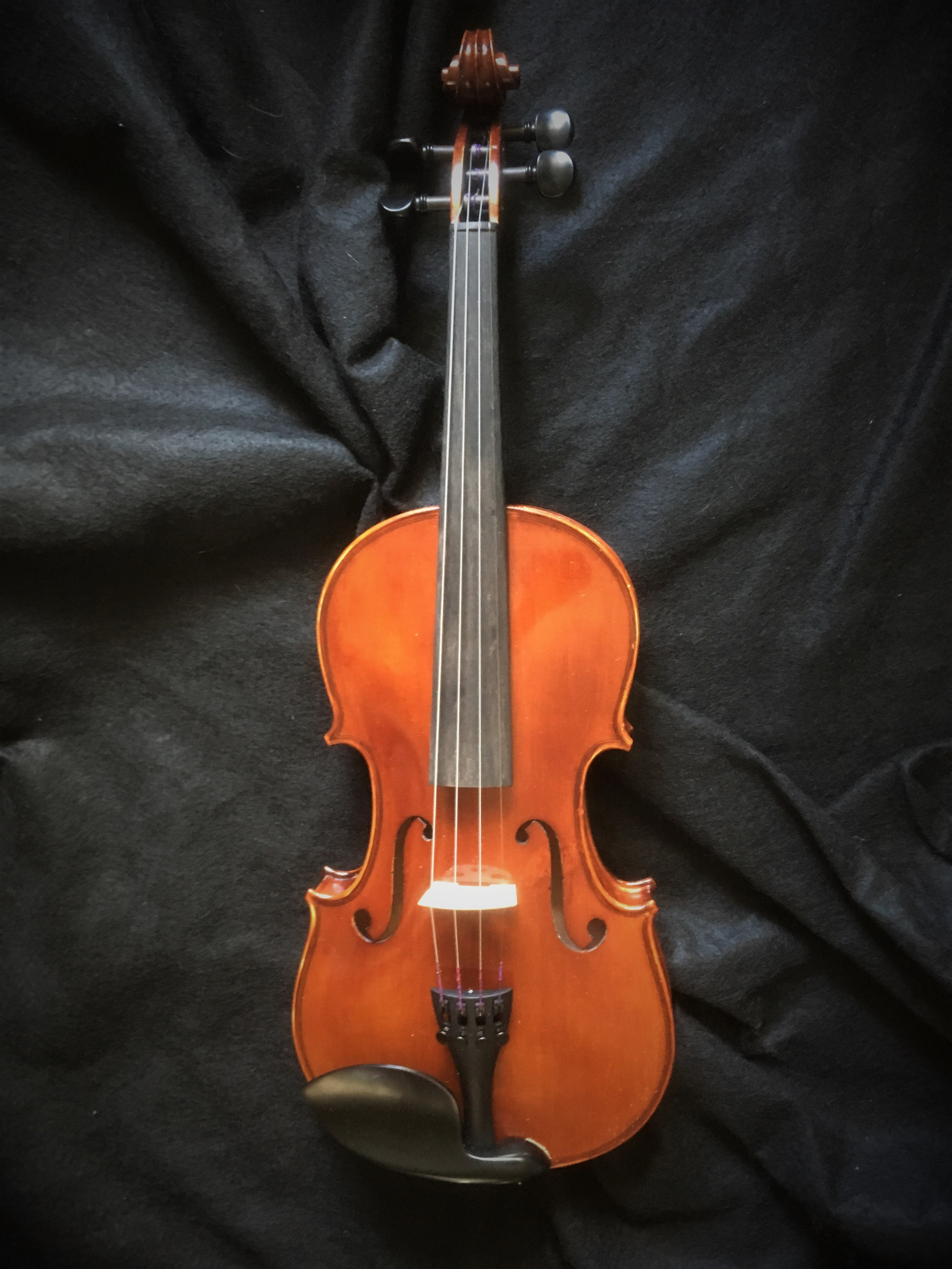Thankful Strings B20 image 2