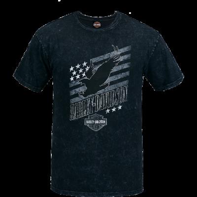 Eagle Swoop with Appleton H-D logo on back.