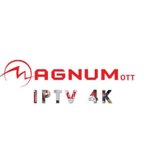 Forfait Magnum 1 an