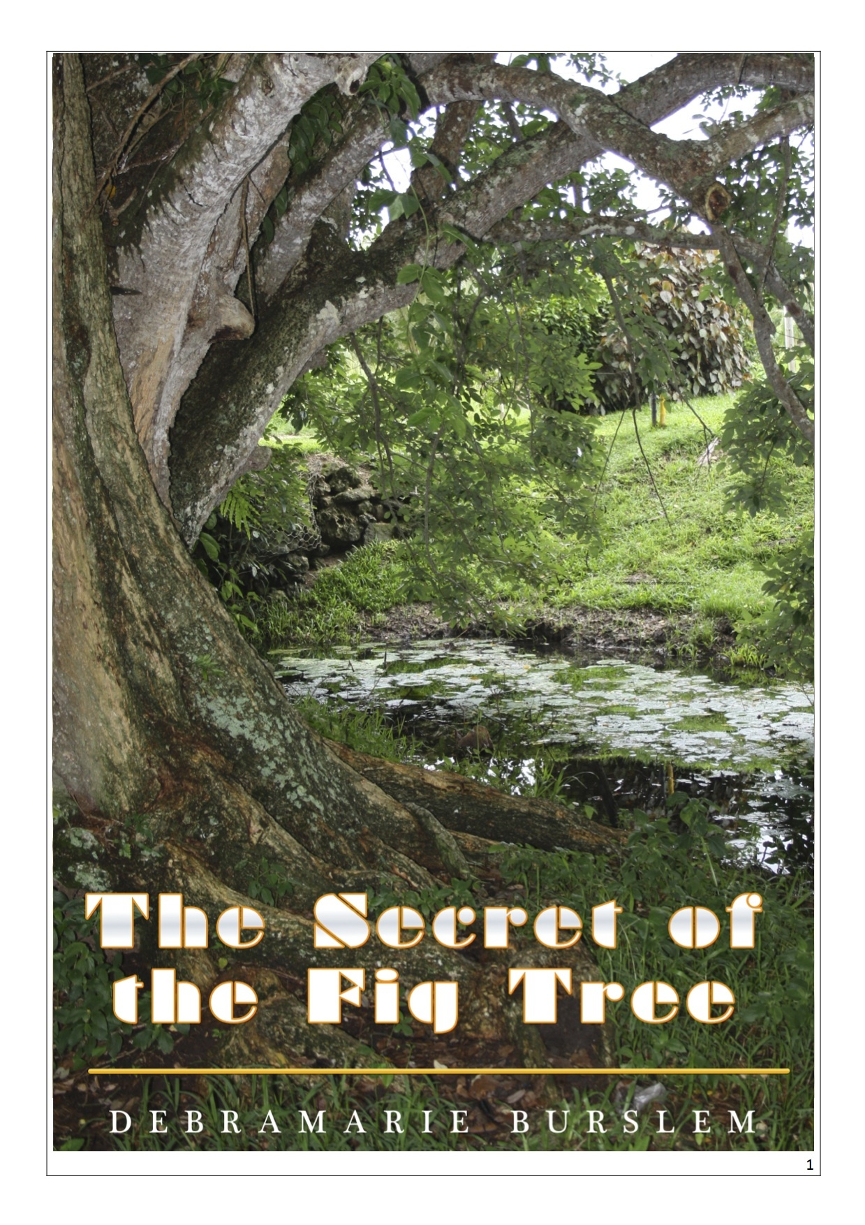 Set: The Secret of the Fig Tree & Heaven's Sweet Words EB TSOTFT
