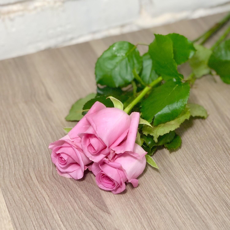 Роза розовая по-штучно