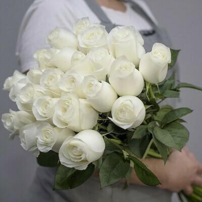 Букет из 25 роз Эквадор Мондиаль 60 см.