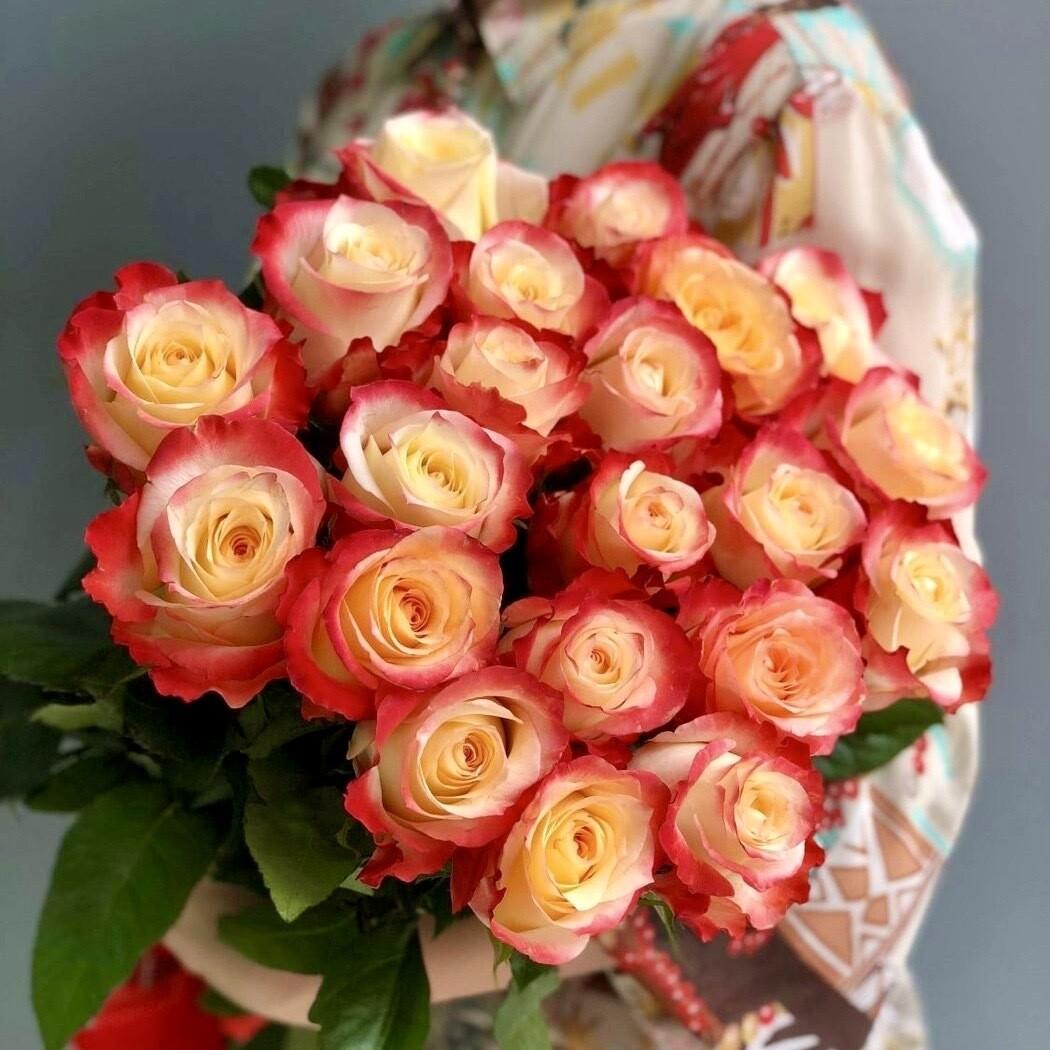 Букет из 25 роз Эквадор Хай Мэджик 60 см.
