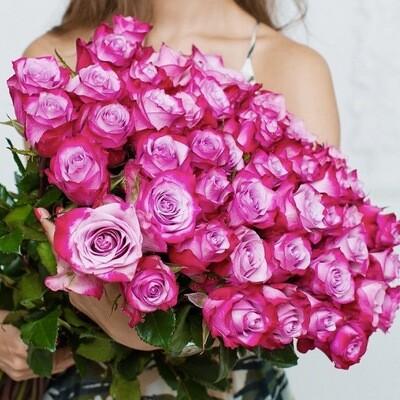 Букет из 25 роз Эквадор Дип Перпл 60 см.