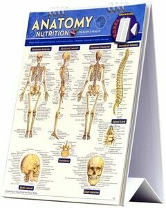 Quick Study Easel Anatomy & Nutrition