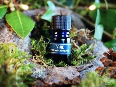 Vine Tree Perfume