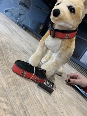 Dog Leash (Large)