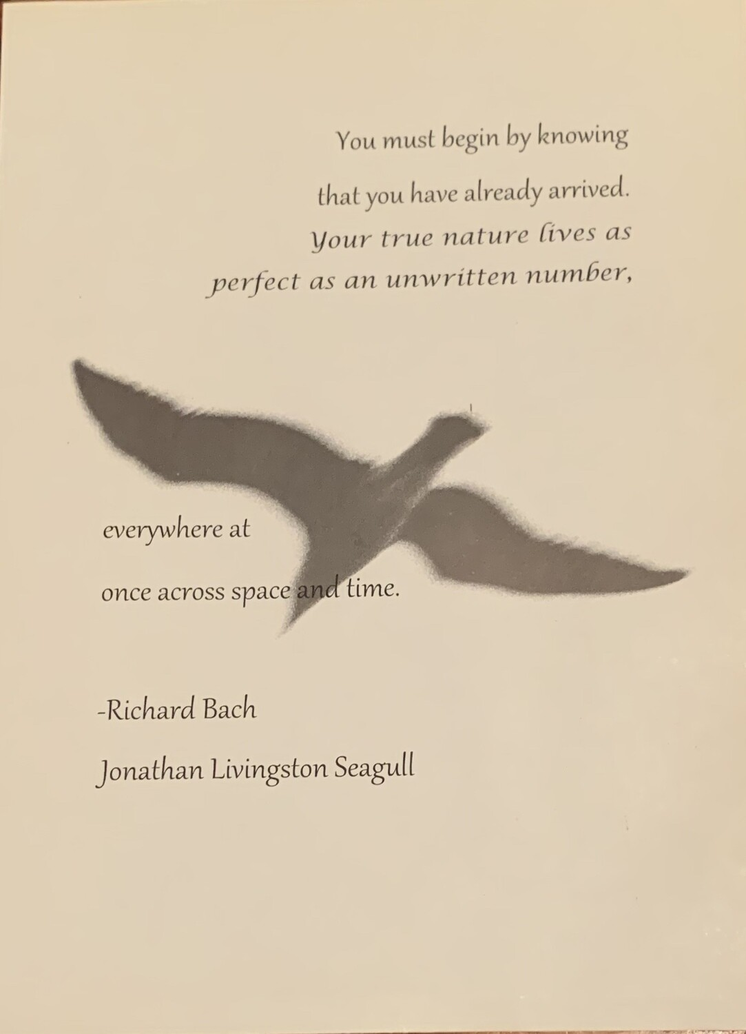 Jonathan Livingston Seagull Quote Print