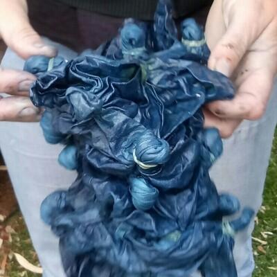 Dye Day - 9-11.30am, Wed 29 January