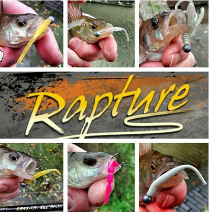 MERABU WORM LRF SOFT PLASTIC LURES    6 variants £2.99 pack for 12