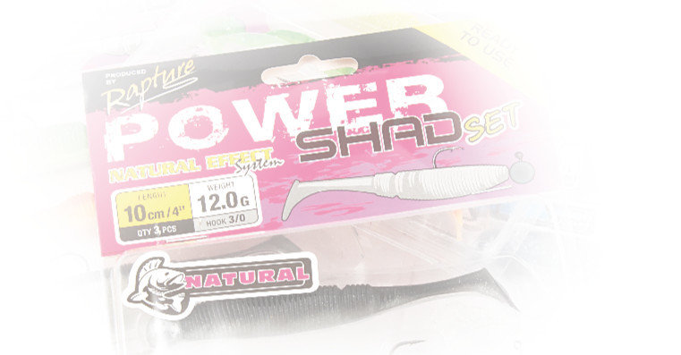 Power Shad  sets  100mm and 75mm  3 or 4 per set  5g or 12g heads